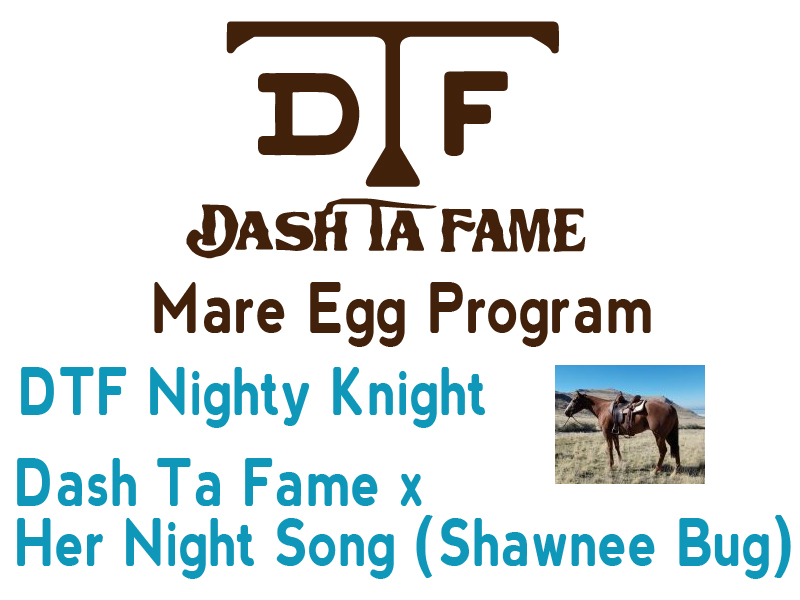 DTF Nighty Knight