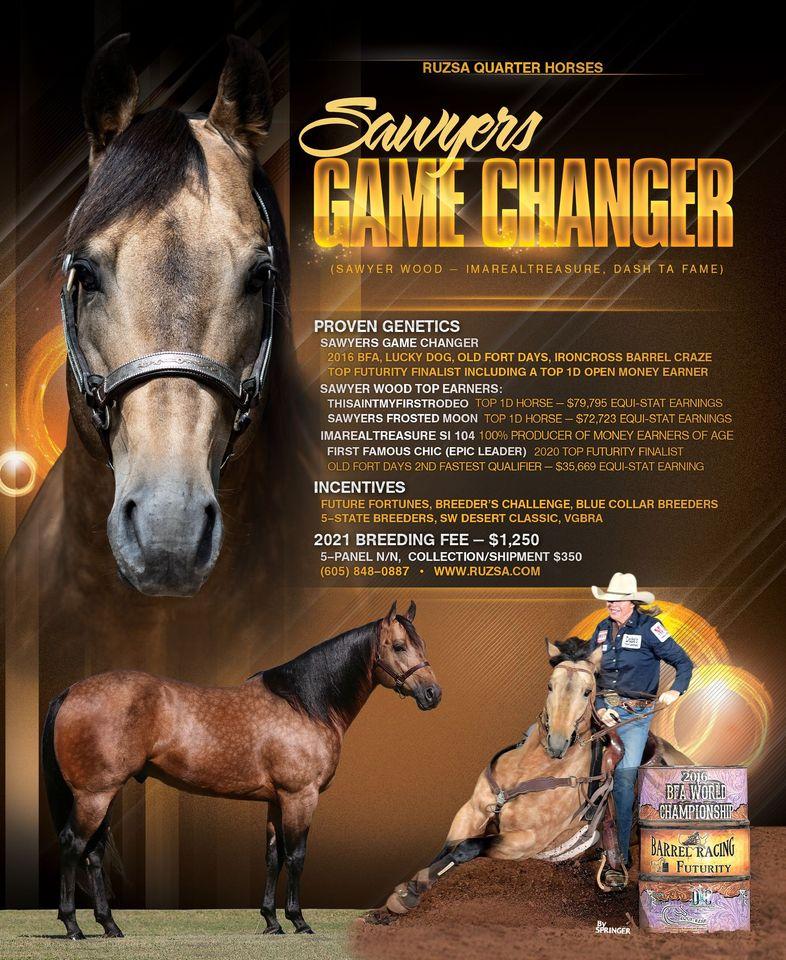 SAWYERS GAME CHANGER