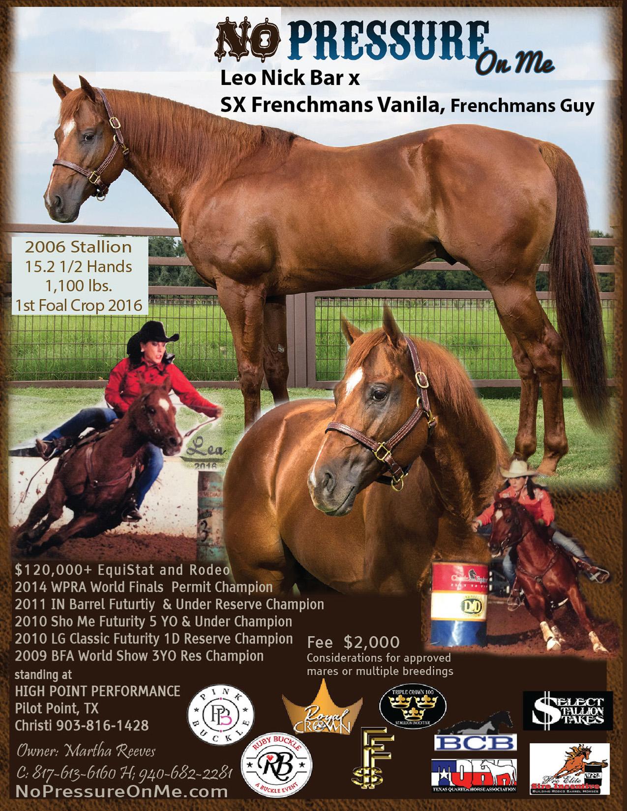 https://performancehorsehotline.com/horses-2020/605/Rooster2020-08-25-HighPoint.jpg